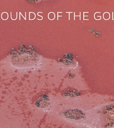 Sounds of the Goldfields- EVEN Bigger Txt 560x292
