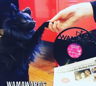 WOLFIE WAMAwards