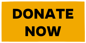 Donate Now Button. WEB