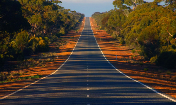 View down eucalyptus gum tree lined Coolgardie Esperance Highway in bushland south of Norseman Western Australia
